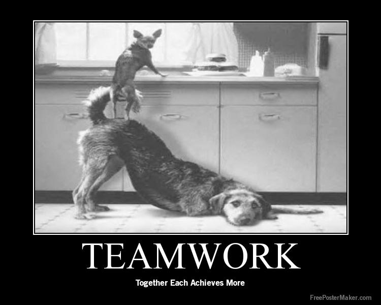 Professional Team Collaboration 7